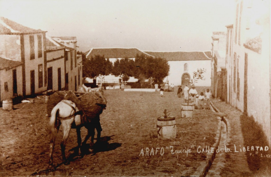 Arafo-antiguo-5